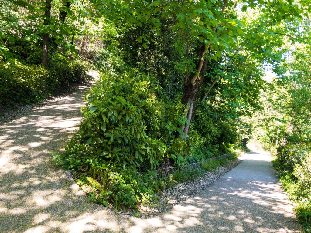 リヨンのフルヴィエールへの小道